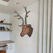 vidaXL Διακοσμητικό τοίχου Ελάφι με φυσική όψη