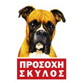 ΤΑΜΠΕΛΑ ΑΛΟΥΜΙΝΙΟΥ Νο229 (22 x 33cm) - 00229ΑΛ