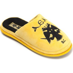 Παιδικές Παντόφλες AEK 166109C Κίτρινο Parex 26f7ac6c98f
