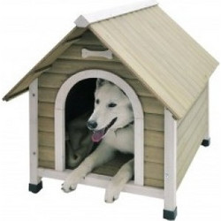 897f2c0a98ea Nobby Σπίτι Σκύλου