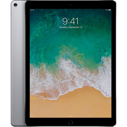 "Apple iPad Pro 9.7"" Wi-Fi & Cellular 256 GB"