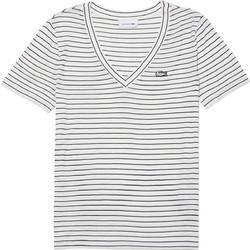 c266b749d46a Lacoste γυναικείο T-shirt με V λαιμόκοψη Ottoman Jersey - TF3910 - Λευκό