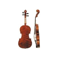 STENTOR - MOD. 1591 THE ELYSIA COMPLETE 4/4 Cello